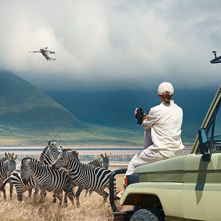 Voyage Safari